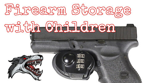 Illinois Firearm Storage with Children, age limit, penalties and exemptions - Alpha Koncepts
