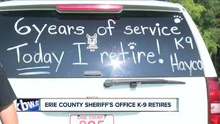 Deputy gives his partner a forever home - Video