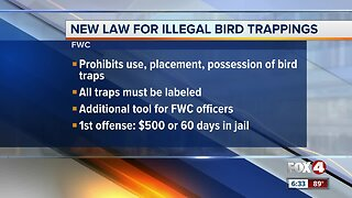 New law for illegal bird trapping