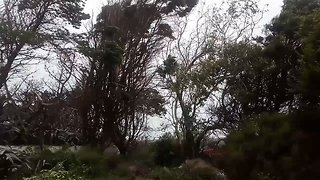 Cape Clear Island Hit by High Winds as Ex-Hurricane Ophelia Reaches Ireland - Video