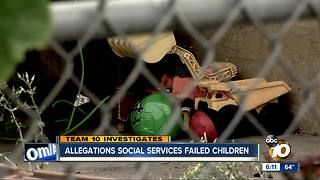 Allegations social services failed children
