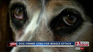 Humane Society cites woman whose dog mauled beagle - Video
