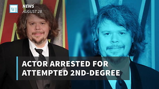 Actor Arrested For Attempted 2nd-Degree Murder, Allegedly Beat Woman With Bat - Video