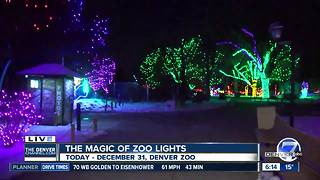 Zoo Lights continues through New Years Eve - Video
