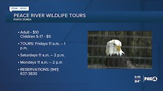 Peace River Wildlife tours