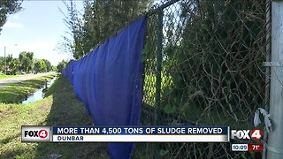 More than 4,500 tons of sludge removed - Video