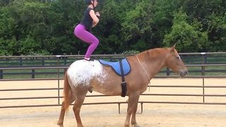 Namaste neigh: Woman performs yoga on horseback - Video