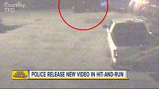 Detectives continue to search for driver in fatal hit and run in Tampa - Video