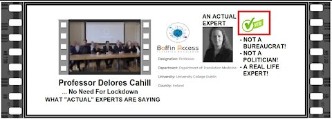 Professor Delores Cahill - THE REAL EXPERTS SAY ... No Need For Lockdowns
