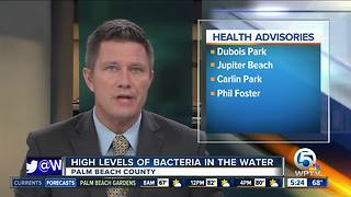 Health advisory issued at 7 beaches in Palm Beach County - Video