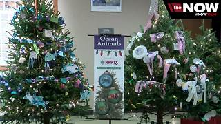 The Milwaukee County Zoo is offering free admission for the holidays - Video