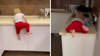 Athletic 1-year-old parkours the kitchen counter with ease