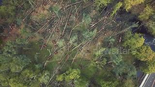 Aerial drone footage shows Connecticut storm damage