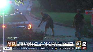 Teen killed when tree falls on car identified - Video