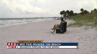 Red tide invade beach, residents prepare for the worst