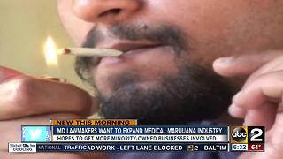 Lamwkers for expanding medical marijuana in MD - Video