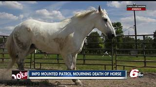 IMPD Mounted Patrol mourns loss of horse Colonel - Video