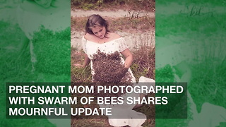 Pregnant Mom Photographed with Swarm of Bees Shares Mournful Update - Video