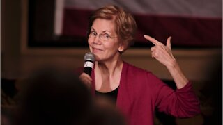 Why Elizabeth Warren Will Never Be Treasury Secretary
