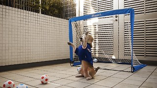 Athletic beagle is an excellent goalkeeper