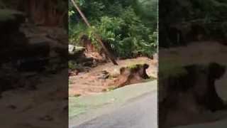 Coffins Exposed After Flooding in Michigan's Cass County - Video