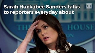 Watch: CNN Reporter Pays the Price for Foolishly Bringing up Fake News to Sarah - Video