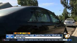 Saw-wielding thief targets vehicles - Video