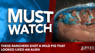 These ranchers shot a wild pig that looked liked an alien - Video