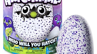 More Hatchimals are coming to Toys R Us This Holiday - Video