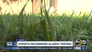Got allergies? Here's how to help them - Video