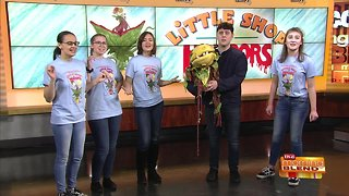 """""""Little Shop of Horrors"""" from Ronald Reagan High School"""