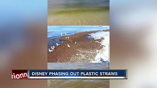 Walt Disney Company to eliminate plastic straws and more by 2019