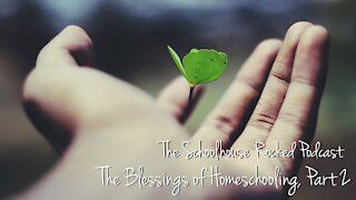 Aby Rinella - The Benefits of Homeschooling, Part 2