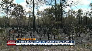 Florida homeowners insurance covers wildfire damage