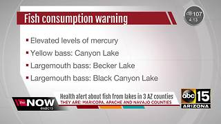 Fish caught in Arizona lakes contain high mercury levels - Video