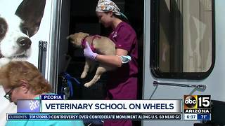 Midwestern University providing animal care across Arizona with mobile vet clinic - Video