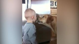 Tot Boy And His Dog Share Cookie Dough - Video