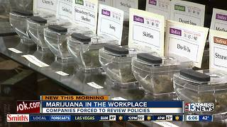 Marijuana in the workplace questions
