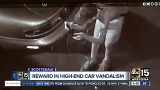Reward offered for info leading to arrest of luxury car vandal - Video