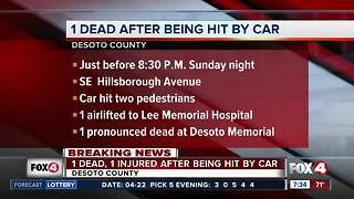 Troopers: Pedestrian killed by car - Video