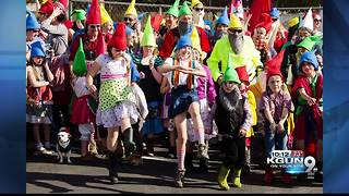 Gnome Fest 2017 to try to break world record - Video