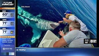 Fisherman has encounter with great white shark