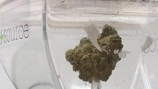 Nevada judge denies request to stop pot emergency rules - Video