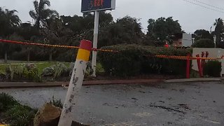 Severe Storm Knocks Down Trees in Perth - Video