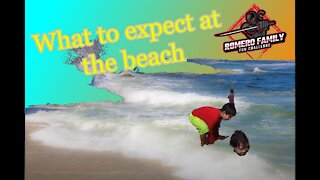 What to expect at the beach   at la jolla cove
