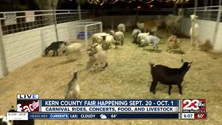 Kern County Fair opens today, petting zoo & carnival rides - Video