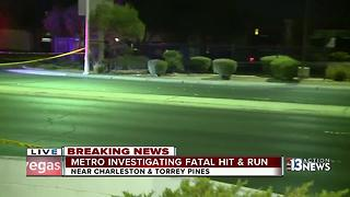 One person dead in hit-and-run crash - Video