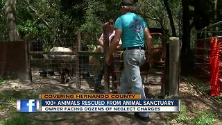 More than 100 animals rescued from animal sanctuary in Hernando County - Video
