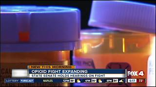 Florida Legislature looks at combating opioid epidemic - Video