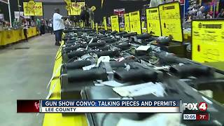Concealed Weapons Applications Common at Florida Gun Show - Video